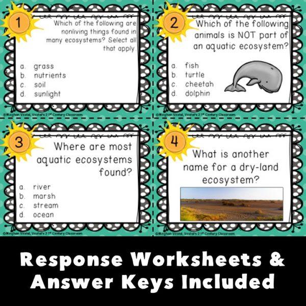 3rd-grade-science-task-cards-bundle-5