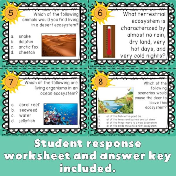 aquatic-and-terrestrial-ecosystems-task-cards-4