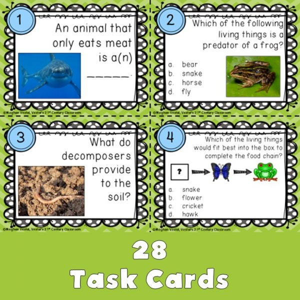 food-chains-task-cards-3