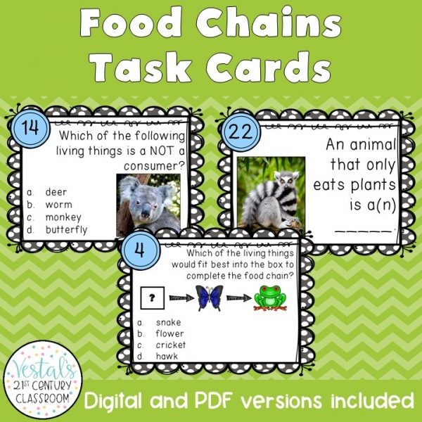 food-chains-task-cards