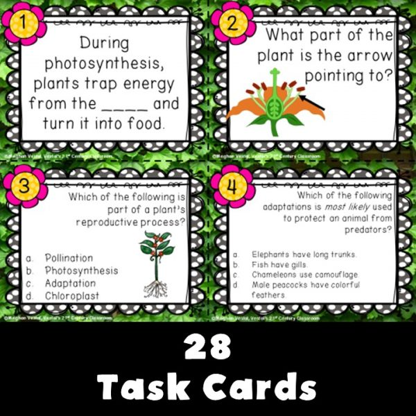 plant-and-animal-structures-task-cards-3