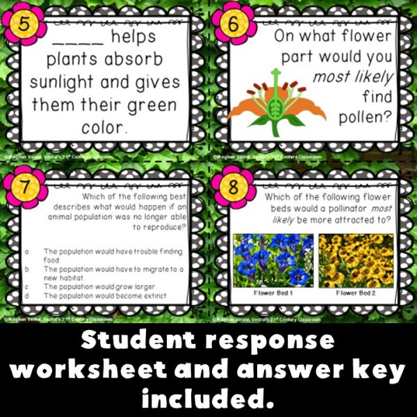 plant-and-animal-structures-task-cards-4