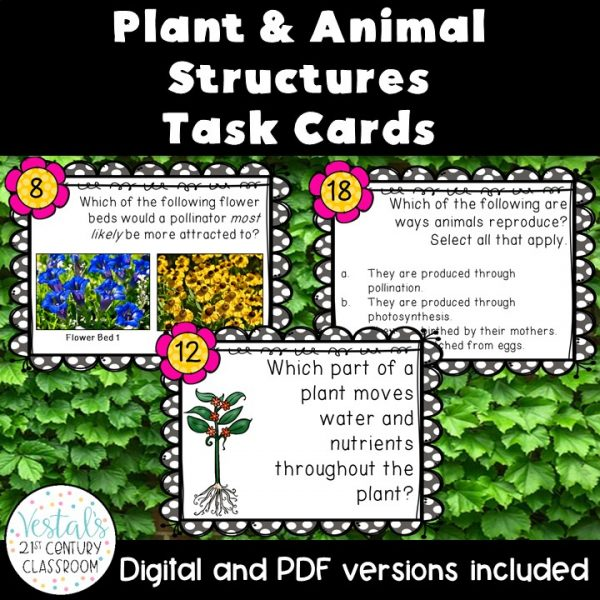 plant-and-animal-structures-task-cards