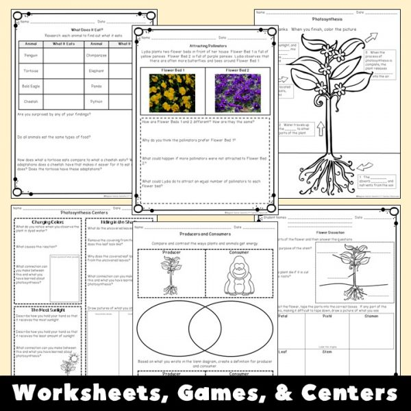 plant-and-animal-structures-unit-3