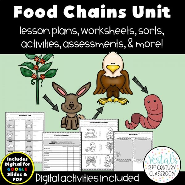 food-chains-unit